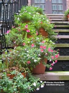 Potted Plants Near Front Door