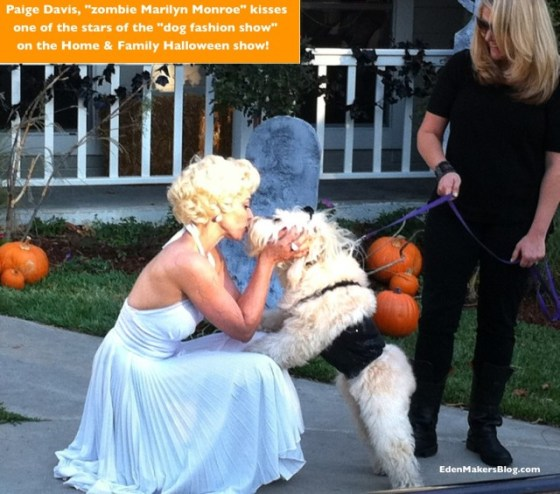 Paige-davis-Marilyn-Monroe-kisses-dog