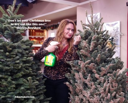 shirley-bovshow-christmas-tree-tips-to-keep-trees-fresh-longer-edenmakers