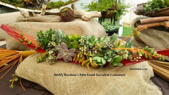 red-palm-frond-succulent-container-designed-shirley-bovshow