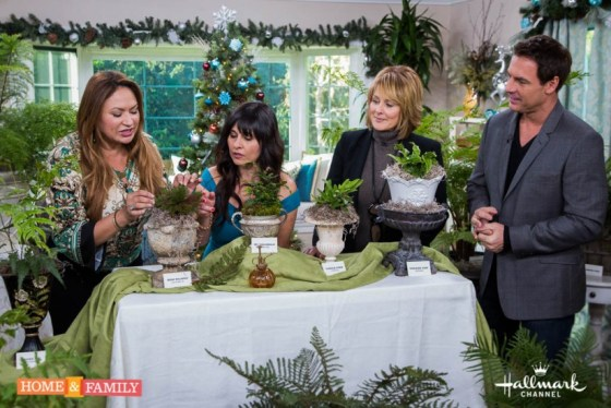 ferns-new-varieties-basic-care-shirley-bovshow-garden-designer-expert-home-and-family-show-cristina-ferrare-mark-steines-edenmakers-blog