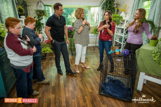 home-and-family-show-garden-expert-shirley-bovshow-pet-safety-near-plants-edenmakers-blog