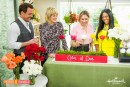 shirley-bovshow-talks-the-meaning-of-rose-colors-home-and-family-show