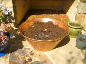 copper planter filled with soil