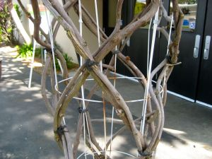metal trellis support