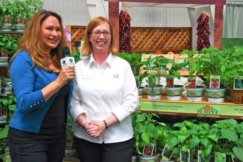 Shirley Bovshow at Burpee Home Gardens