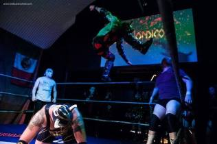 Credit Rob Brazier Photography