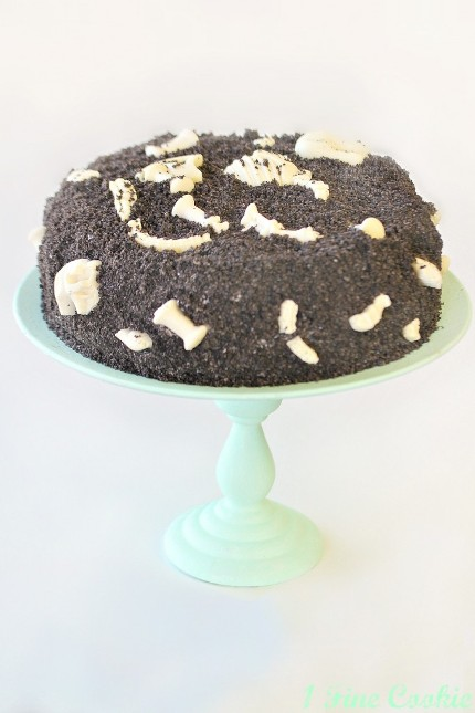 fossilcake