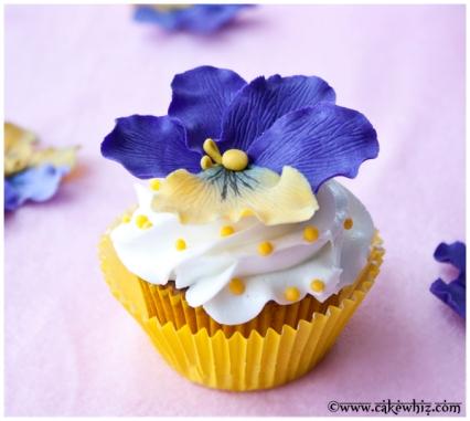 pansy.cupcakes