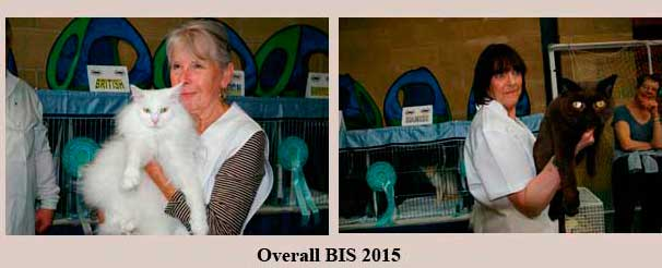 Overall BIS 2015