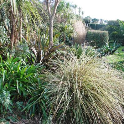 Goodby To The Last Days Of Winter In The Ednovean Farm Garden Monthly Diary