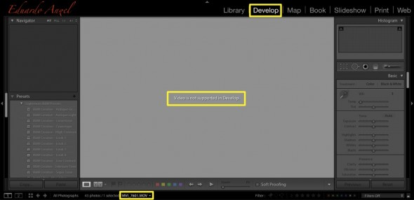 Video files are not supported on the Develop Module yet.