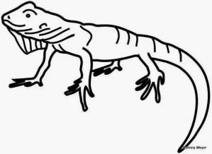 iguana-para-imprimir