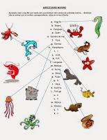 abecedario-marino