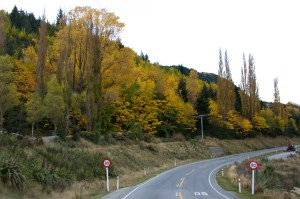 Queenstown to Shotover 1