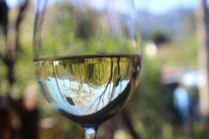 Wein3
