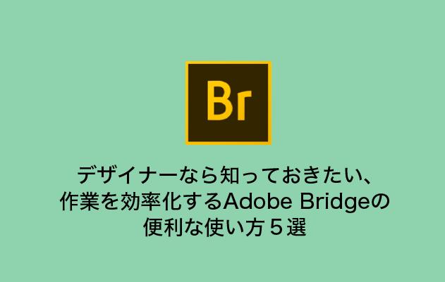 デザイナーなら知っておきたい、 作業を効率化するAdobe Bridgeの 便利な使い方5選