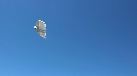 avion effleure