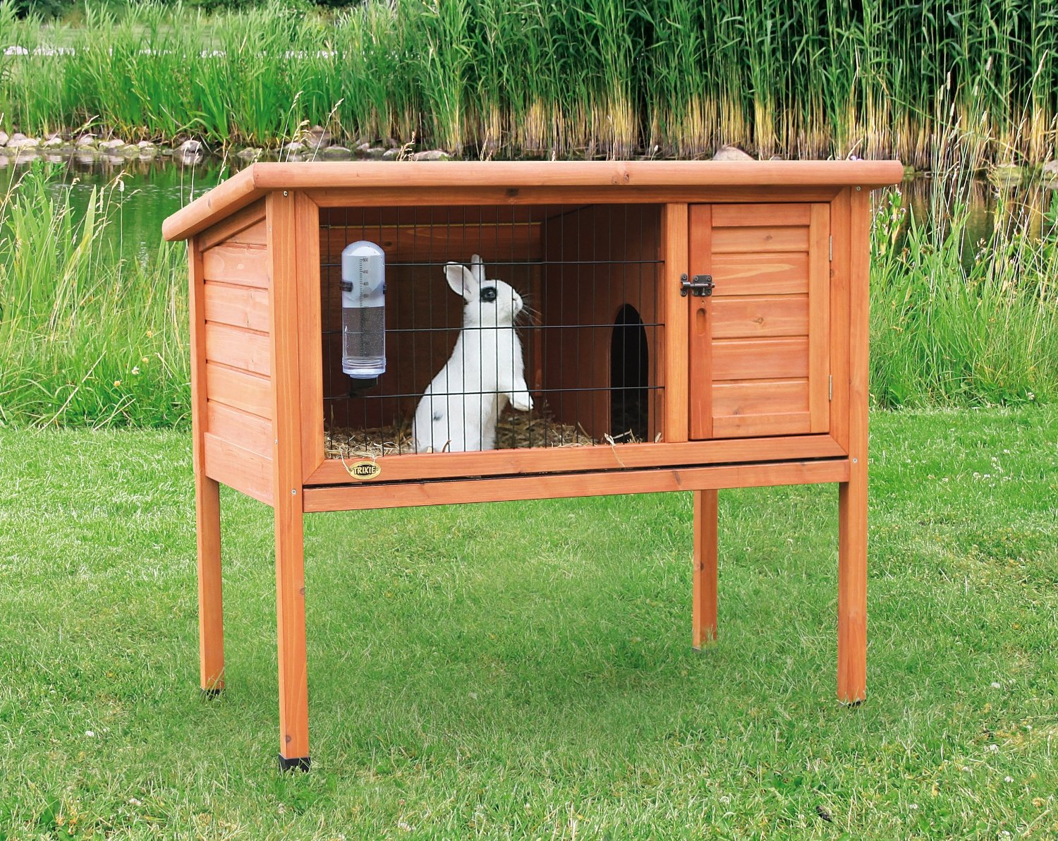 Horrible Sale Cardiff Rabbit Hutch Sale Nottingham Rabbit Hutches A Secured Place Your Bunny Pet Eggshell Rabbit Hutch houzz-03 Rabbit Hutch For Sale