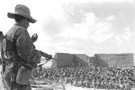 Egyptian POWs in Al Arish June 1967