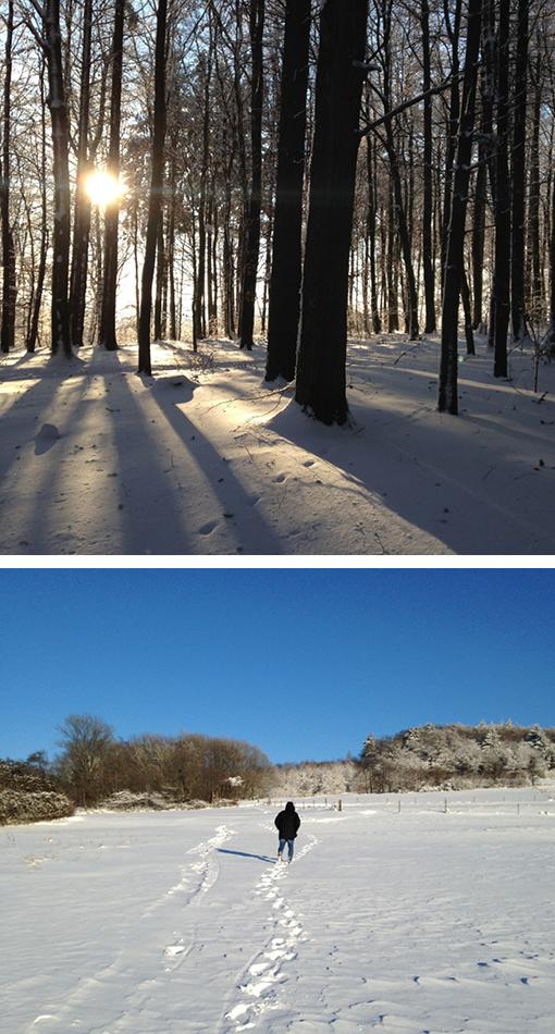 Winterzeit, Odenwald, Katzenbuckel, Winterspaziergang