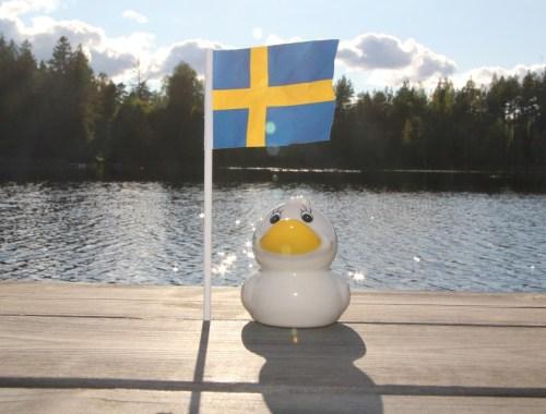 schweden-freunde-urlaub-Vimmerby-südschweden-ente-see-flagge-fahne