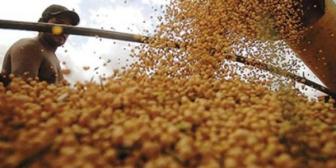 Valor de exportaciones bolivianas hasta abril cae casi un 30%
