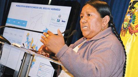 La exministra de Desarrollo Rural y Tierras, Nemesia Achacollo, en una pasada conferencia de prensa. Foto: La Razón - archivo