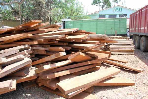 Una sola persona ganó 68 remates de madera en la ABT