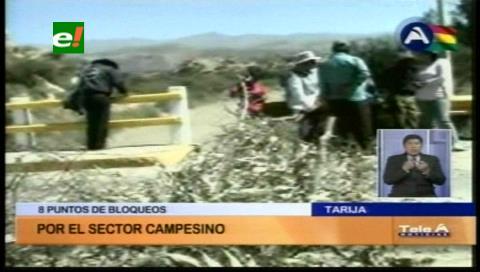Campesinos de Tarija inician bloqueo de caminos en defensa del Prosol