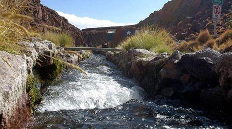 Las aguas del Silala, en territorio boliviano. Foto: ABI - archivo