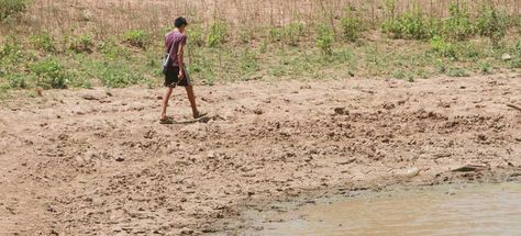 Cientos de familias se ven afectadas por la sequía.