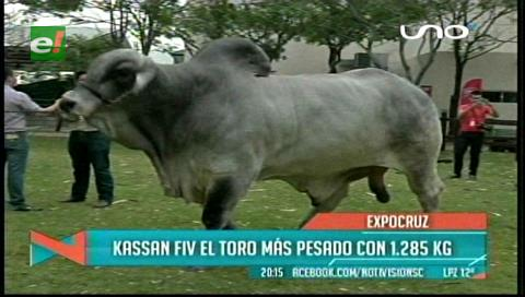 Kassan, el peso pesado de Expocruz 2016