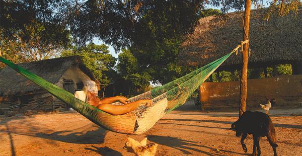un sueñito despreocupado el placer de dormir bajo los árboles Este hombre descansa en una población rural de la provincia Sara. Está bajo la sombra y la brisa llega del suave movimiento de su hamaca