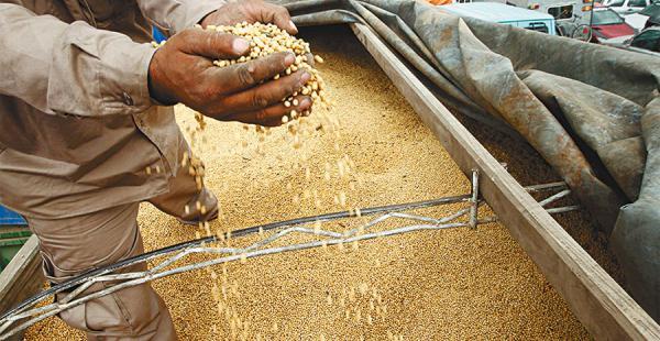 Diversificar la economía, para el BM, es la opción para evitar la dependencia de las materias primas