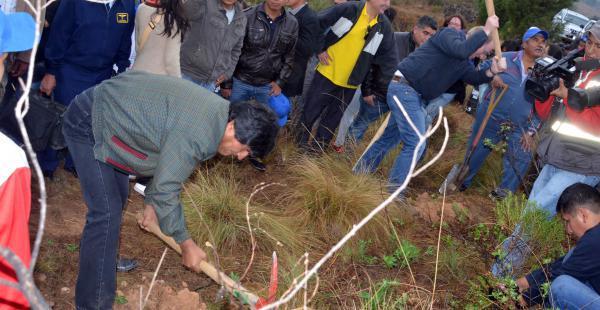 Evo Morales plantó 11 árboles en la comunidad de San Andrés en Tarija,e n octubre del año pasado