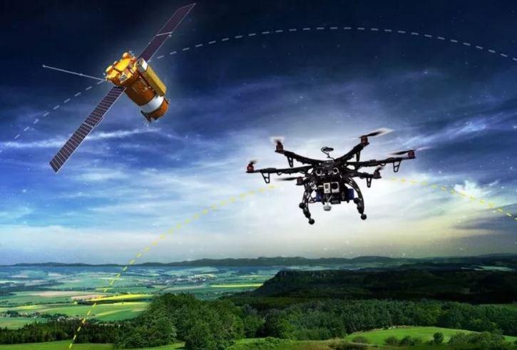С помощью дронов хотят посадить 1 млрд деревьев за год