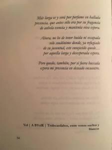Señor de Cascales_Verso a Yol 2