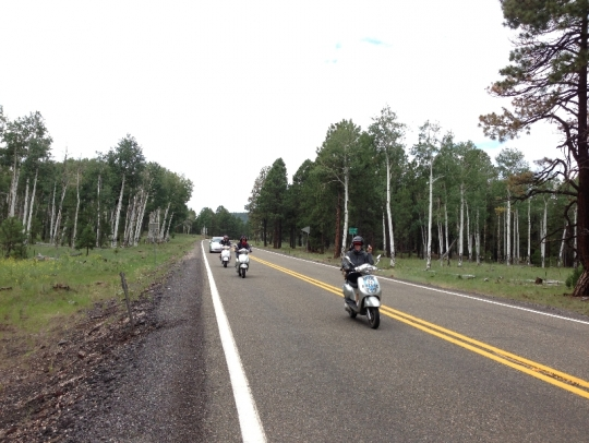 Susan, Dominique, and Rachel e-scootering at 8,000+ feet among the aspen trees near Flagstaff