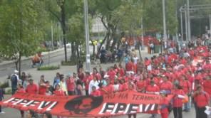 mexico-city-free-8-mich_6