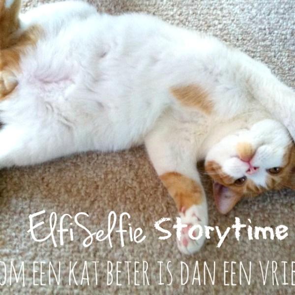 5 redenen waarom een kat beter is dan een vriendje