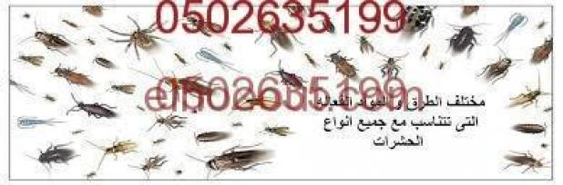 شركة مكافحة حشرات