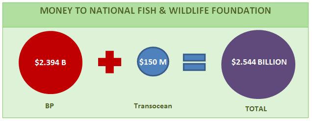 National fish and wildlife foundation choice image for National fish and wildlife foundation
