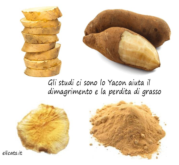 Gli studi ci sono lo Yacon aiuta il dimagrimento e la perdita di grasso