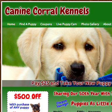 Working with Canine Corral Kennels