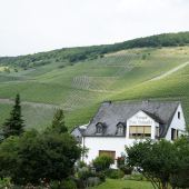 Weingut Willi Schaefer with the vineyards of Graach
