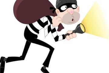 Bastard thief