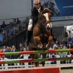 Salon du cheval: Quand passion et savoir-faire se rencontrent