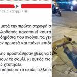 Βούλγαρος κακοποίησε σεξουαλικά σκυλίτσα στο Φλοίσβο – Καταρρίπτεται