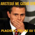 Enrique Peña Nieto plagió el 29% de sus tesis